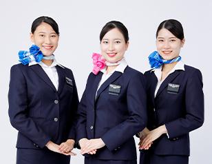 就職者の約8割が航空関連企業へ就職